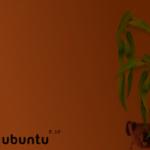 Lanzada la Alpha 4 de Ubuntu Karmic