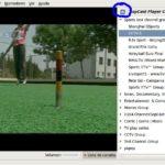 Ver tv en Ubuntu, los canales sopcast